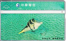 TAIWAN - Fish, Chunghwa Telecard(7112), CN : 758M, Used - Taiwan (Formosa)