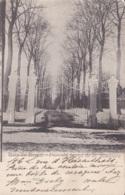 Bois-de-Breux Parc Du Baron De La Rosilière Circulée En 1905 - Belgique