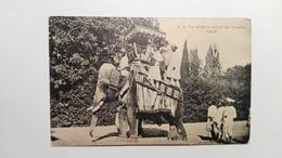 India - The Holkar's Son On The Elephant Indore - India