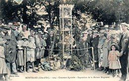 Montbard Concours Agricole Exposition De La Maison Mugneret - Montbard