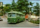 Filobus 238 Ex FITRAM La Spezia Urbano Autobus Pulman Mercedes Filovia Trolleybus - Bus & Autocars