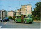 Filobus 1 TEP Filovia Chieti Urbano Autobus Pulman Mercedes Trolleybus - Bus & Autocars