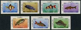 D2- Afghanistan 1986. Fish. See Life. Marine Life. - Afghanistan