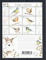 Nederland 2019 Nvph Nr ??, Mi Nr ??, Tuinvogels, Bird, In Nederland, Sheet, Koolmees, Goudhaan, Roodborst, Huismus, - Ongebruikt