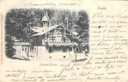 CPA Roumanie, SINAIA, Castelul Foister, 1900 - Roemenië