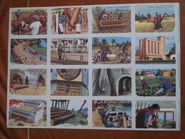 Planche éducative Volumétrix - N°157 - Géographie Générale II - Libri, Riviste, Fumetti