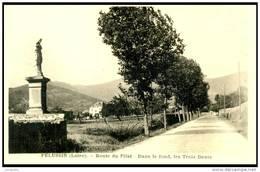PELUSSIN   (42) - LA ROUTE DU PILAT - BB-730 - Pelussin