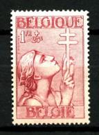 BELGIQUE - YT 381 - 1F+25c Carmin - Neuf N* - Très Beau - Belgium