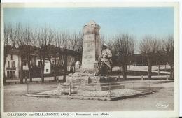 CHATILLON SUR CHALARONNE - Monument Aux Morts - Châtillon-sur-Chalaronne