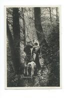 Couple Armailli Chèvre 1927 - Couples