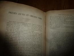 1897 INDOCHINE (Annam, Tonkin, Cochinchine, Vietnam, Etc Figures Jaunes Et Chignons Noirs     (19 Pages) - Old Paper
