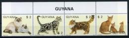Guyana, 1988, Cats, Animals, Fauna, MNH Strip, Michel 2084-2087 - Guyana (1966-...)