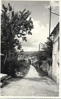 SAINT MARC  - ANGOULEME -  ENTREE DU VILLAGE EN 1945  RARE PHOTO ORIGINALE INEDITE TRES BON ETAT  2 Scans - France