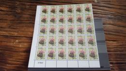 LOT 456082 TIMBRE DE FRANCE NEUF** LUXE N°245 VALEUR 96 EUROS FEUILLE - Feuilles Complètes