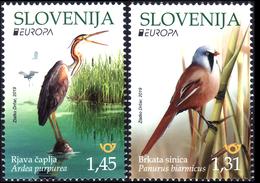 SLOVENIA SLOWENIEN 2019 EUROPA CEPT BIRDS ANIMALS UCCELLI VOGEL** SET OF 2v ** MNH - Birds