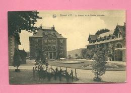 C.P.  Bomal-sur-Ourthe  =  Le  Château Vu De L'entrée  Principale - Durbuy
