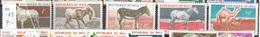 Mali Mnh ** 7 Euros Animals Set Donkey Sheep Goat Dromedar Horse - Mali (1959-...)