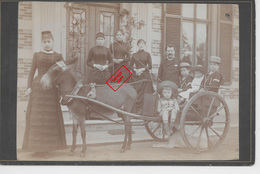 Photo Ancienne < 1900 Promenade En Famille 4 Enfants En Charrette D'attelage Sur Carton Noir épais - Photographs