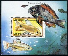 Mongolia, 1987, Fish, Animals, Fauna, MNH, Michel Block 118 - Mongolie
