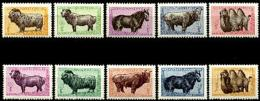 Mongolia, 1958, Animals, Goat, Sheep, Horse, Cattle, Fauna, MNH, Michel 138-147 - Mongolie
