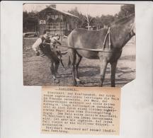 CORNER SEE SCAN BREITBART KRAFTMENSCH  16*12CM Fonds Victor FORBIN 1864-1947 - Fotos