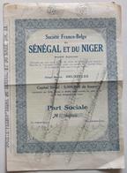 Societe Franco-Belge Du Senegal Et Du Niger. - Actions & Titres