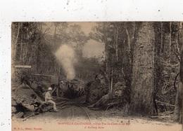 NOUVELLE-CALEDONIE UNE VUE DU CHEMIN DE FER (ARRIVEE DU TRAIN) - Nouvelle Calédonie