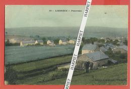 LIERNEUX  -  Magnifique Lot De 17 Cartes Postales Anciennes - Lierneux