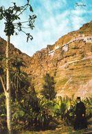 1 AK Palästina - Palestine * Jericho Der Berg Der Versuchung (Temptation) Und Das Sandarion-Kloster * - Palästina
