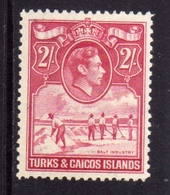 TURKS AND CAICOS 1938 1945 KING GEORGE VI RE GIORGIO SALT INDUSTRY INDUSTRIA DEL SALE 2sh MNH - Turks E Caicos