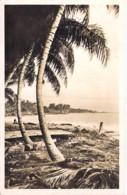AFRIQUE NOIRE - GABON : Cocotiers Sur Les Bords De L'Océan - CPSM PF Black Africa - Tree Coconut Palm De Coco - Gabon