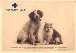 """Croix Bleue De La Jeunesse - Protégez-Nous... """"2 Bêtes Misérables"""" Chat Chien 1940 - Animaux & Faune"""