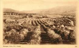 Sepia Illustrated Postcard    Okanagan Valley  B.C.    # 506   Unused - 1903-1954 Kings
