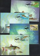 Macedonia / Makedonien 2007 Fishes Maximumcards - Fische