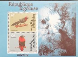 TOGO  1981 Birds S/S - Togo (1960-...)