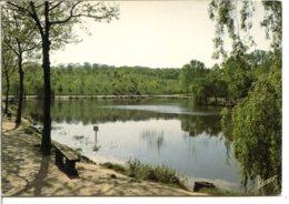 92190 MEUDON (CLAMART) - Forêt Et étang De Trivaux - A Circulé - Meudon