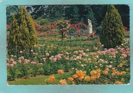 Small Post Card Of La Roseraie Du Parc De La Grange,Geneve,Geneva,Switzerland,V99. - GE Geneva