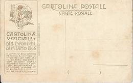 6-EXPO MILANO 1906-N.2-PILADE ROCCO & C. MILANO - Esposizioni