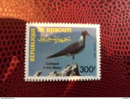 DJIBOUTI 1993 1 V Neuf ** MNH YT 702 Bird Of Djibouti - Gaviotas