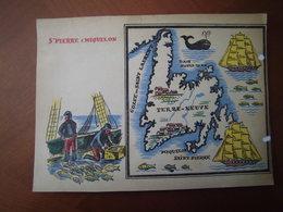 Saint-Pierre Et Miquelon : Rare Et Belle Carte Pédagogique D'après Un Dessin De  Maurice Tranchant (1935). - Historical Documents