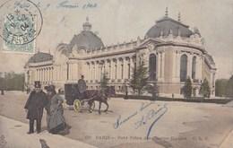PARIS - Petit Palais Des Champs-Elysées - Francia