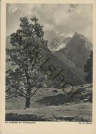 Der Hochalter Bei Berchtesgaden  [2A-2.664 - Berchtesgaden