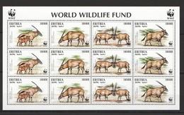 P934 ERITREA WORLD WWF WILDLIFE FUND 1KB MNH - W.W.F.