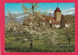 Modern Post Card Of Spiez, Berne, Switzerland,L50. - BE Berne