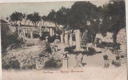 CPA TUNISIE. Carthage. Ruines Romaines - Tunisie