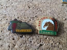 2 PINS PMU BAR TABAC COSMOS  BIERE ET  LOTO CAROTTE PRESSE GALLIATH - Casinos