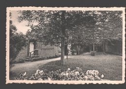 Herentals - Sint-Antonius' Heiligdom - Predikstoel - 1949 - Herentals