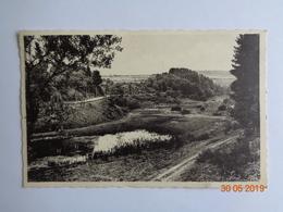 Straimont Sur Vierre - L'Etang Du Moulin Et La Route De Neufchâteau - Herbeumont