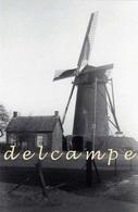 BAARLE-HERTOG (Antwerpen) - Molen/moulin - Zeldzame Opname Van De Gewezen Molen Loots, Opgezeild En In Werking - Baarle-Hertog