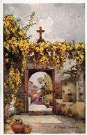 FLOWERS AND GARDENS OF MADEIRA-SERIE NO. 49-A CHAPEL DOORWAY - Madeira